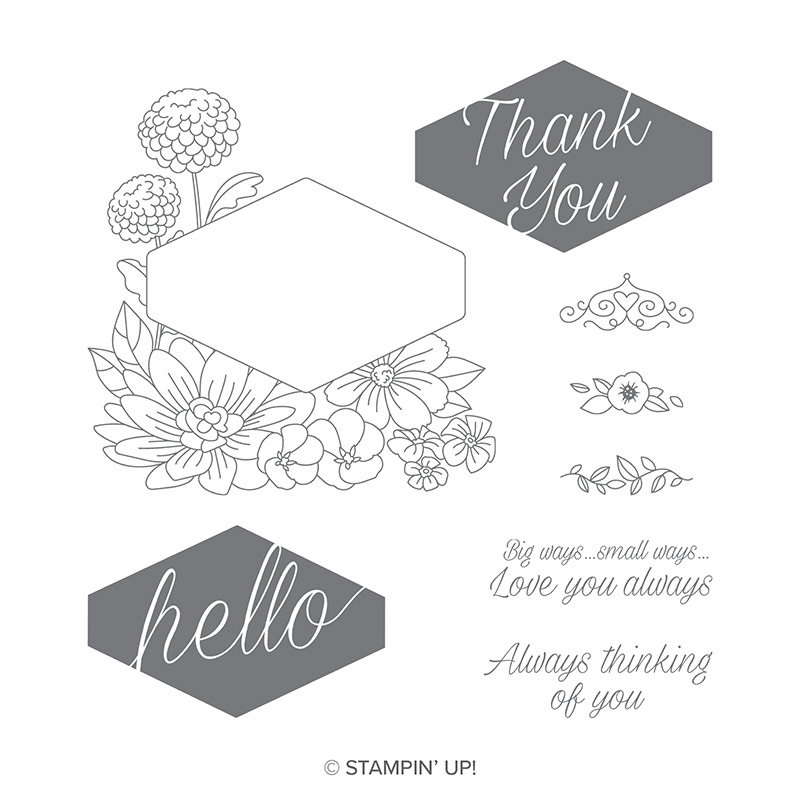 ACCENTED BLOOMS STAMPS BY STAMPIN UP