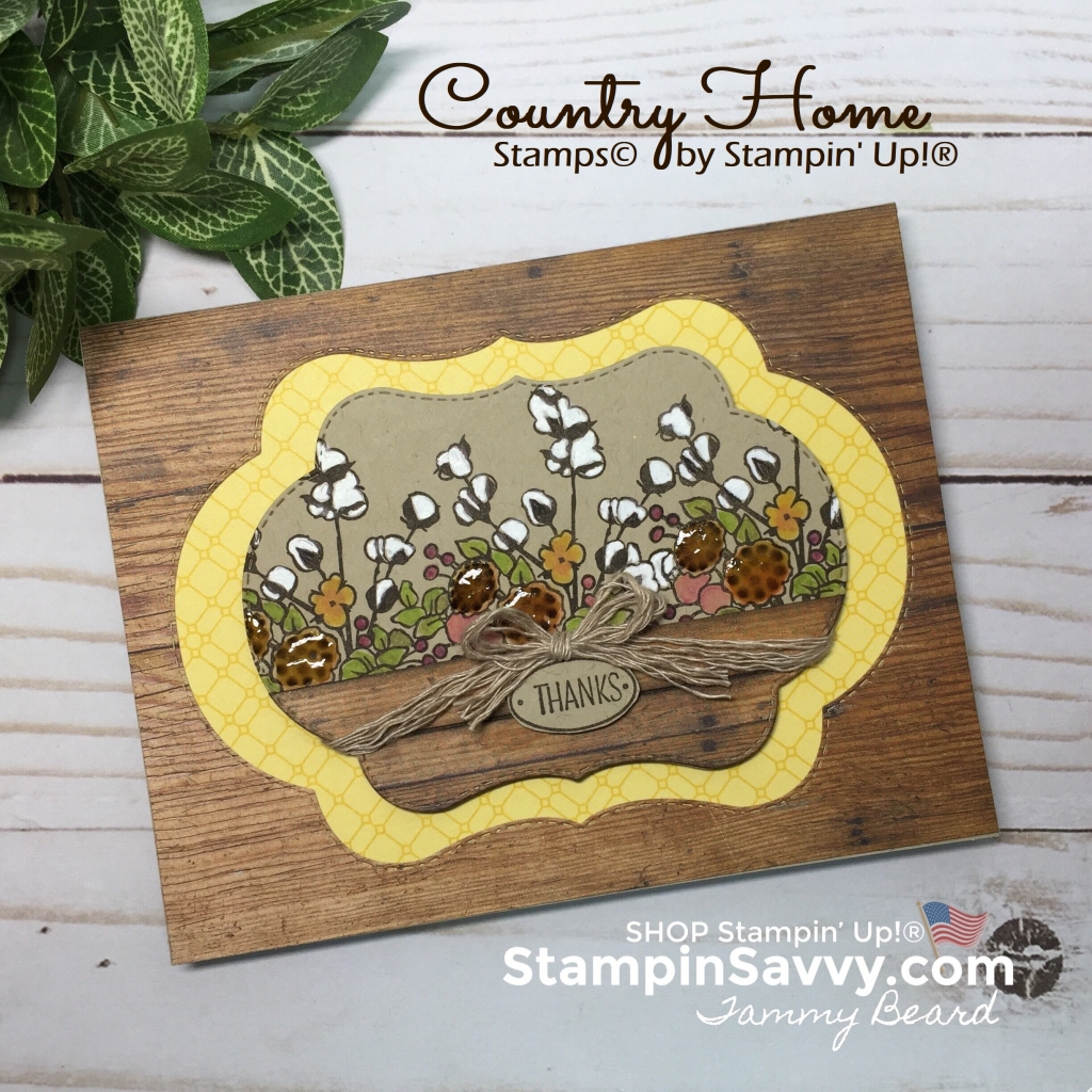color your season, country home, wood textures dsp, natures twine, card ideas, stampin up, stampinup, stampin savvy, tammy beard