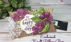 gift card presentation, 3d project ideas, kraft pillow box, country home, blended seasons, stampin up, stampin savvy, stampinup, tammy beard