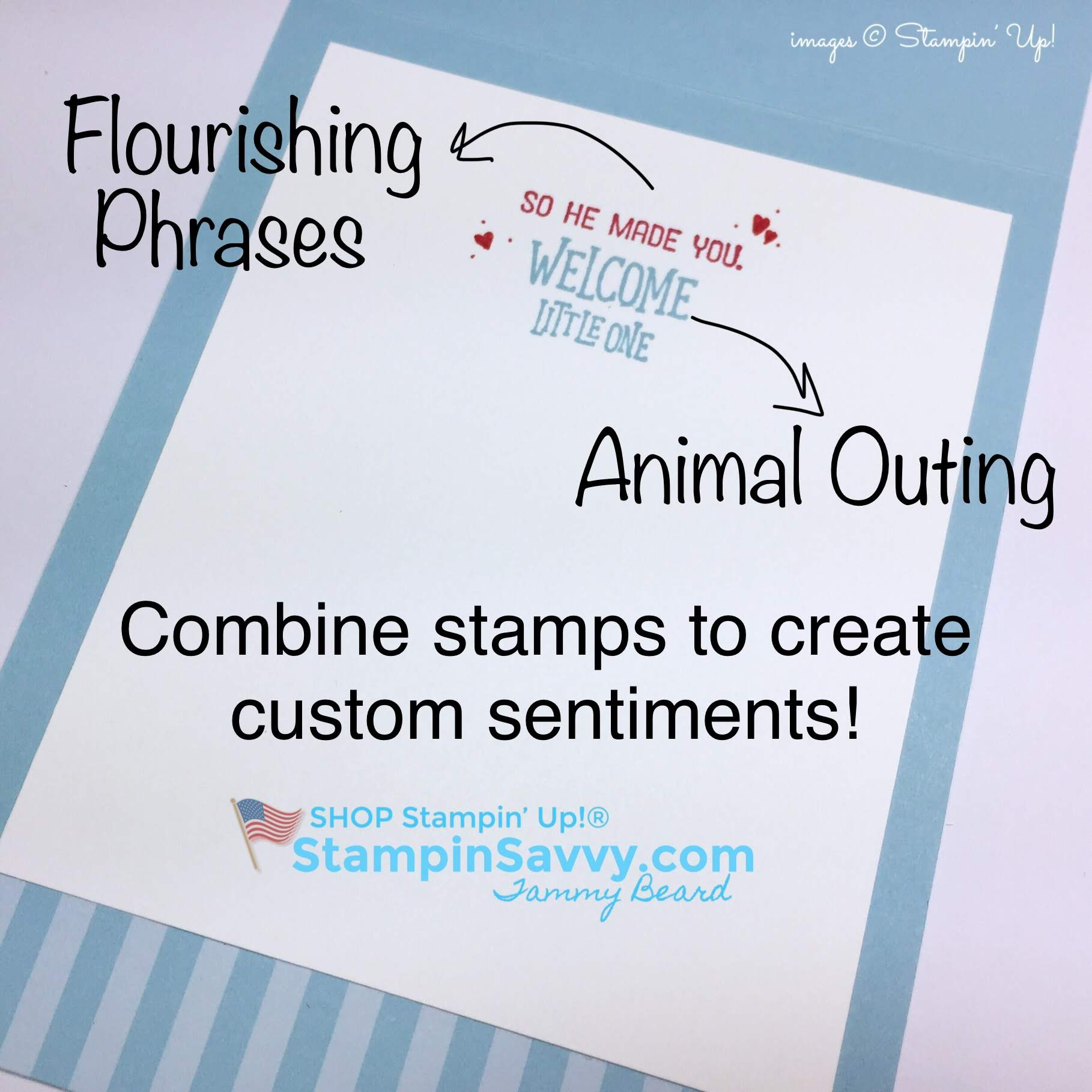 simple baby boy card, stampin up, animal outing, stampinup, stampin savvy, tammy beard