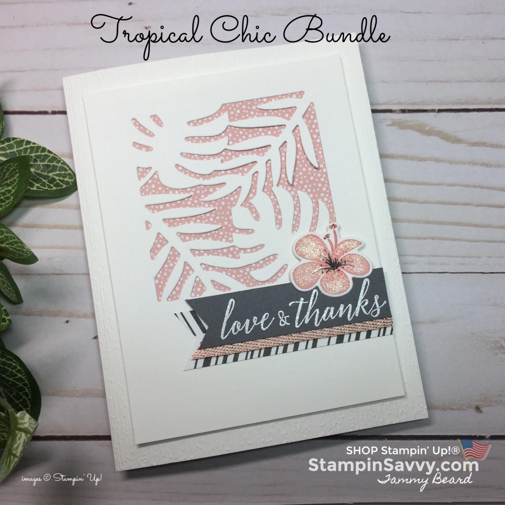 tropical chic bundle, card ideas, stampin up, stampinup, stampin savvy, tammy beard