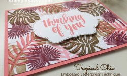 tropical chic, embossed letterpress, stampin up, card ideas, flirty flamingo, stampinup, stampin savvy, tammy beard (1)