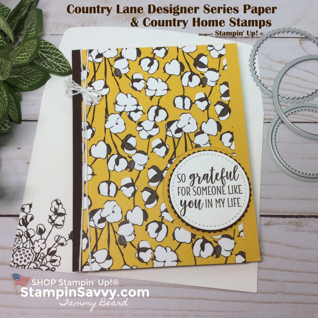 country lane dsp, country home su, country lane suite, stampin up, stampinup, stampin savvy, tammy beard