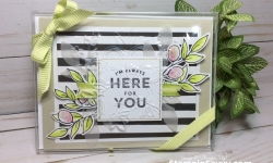 lots of happy card kit, acetate card box, stampin up, stampin savvy, tammy beard