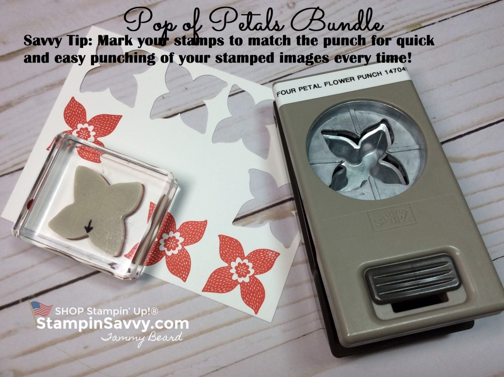 pop of petals, pop of petals bundle, savvy tip, stampin up, stampin savvy, stampinup, tammy beard