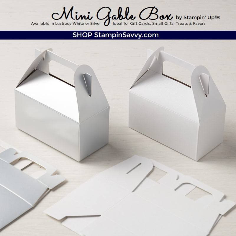 146961, mini gable box, stampin up, stampin savvy, tammy beard