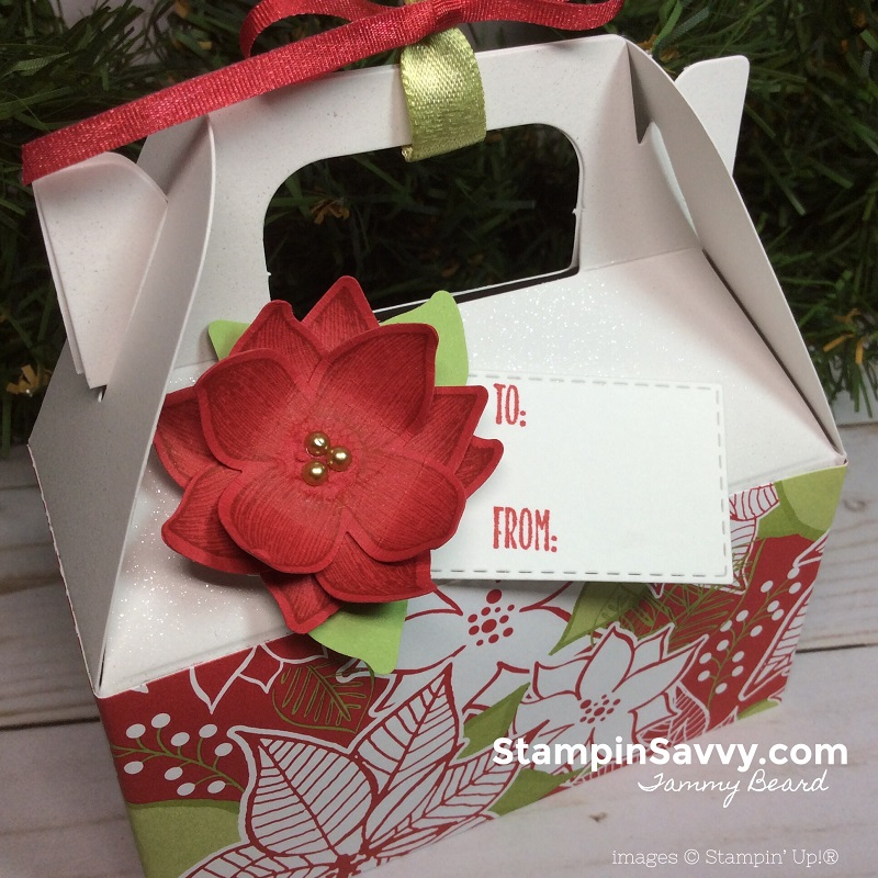 mini gable box, pop of petals, under the mistletoe, stitched rectangle framelits, stampin up, stampin savvy, tammy beard 3