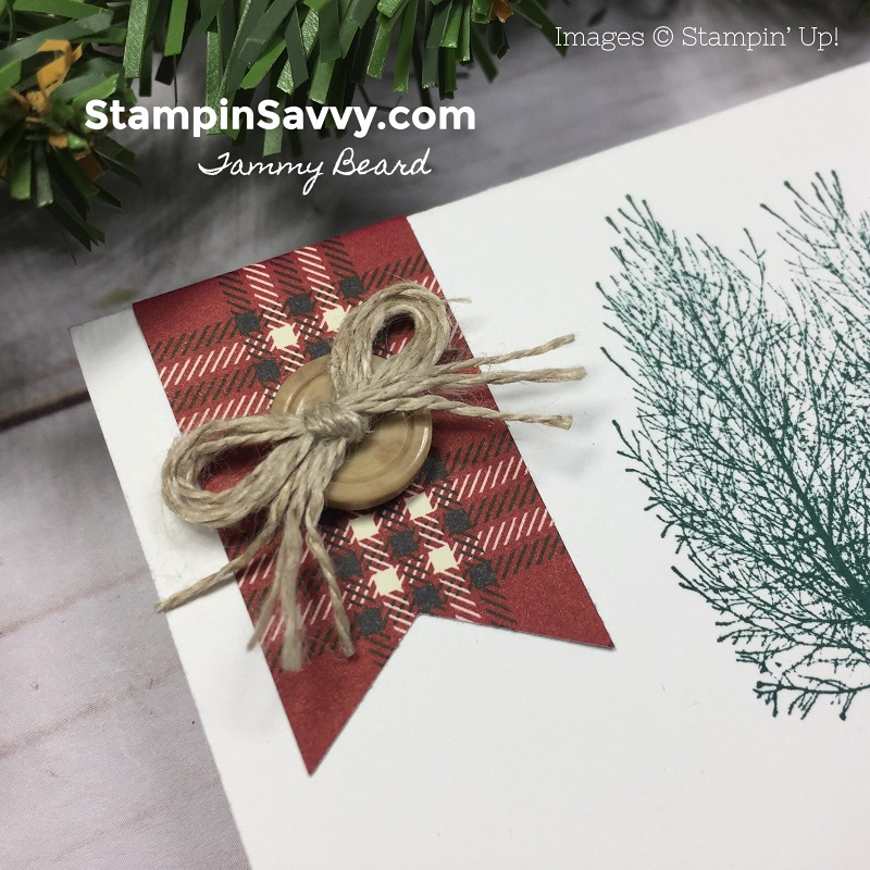 quick masculine thank you cards, winter woods, stampin up, stampin savvy, tammy beard 2
