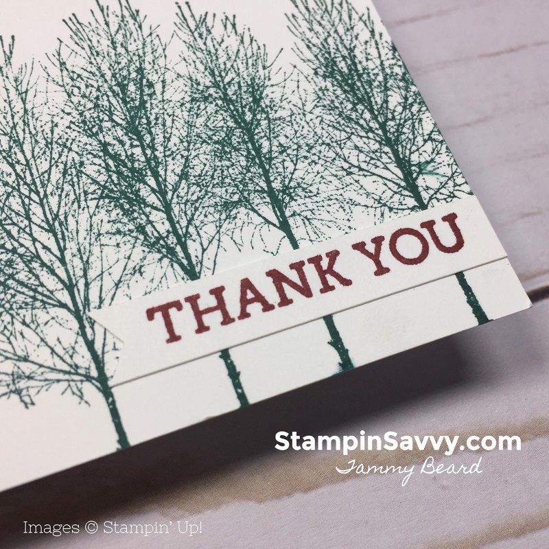 quick masculine thank you cards, winter woods, stampin up, stampin savvy, tammy beard 3