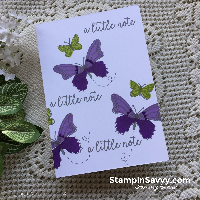 butterfly-gala-cards-stampin-savvy-stampin-up-stampinup-tammy-beard2