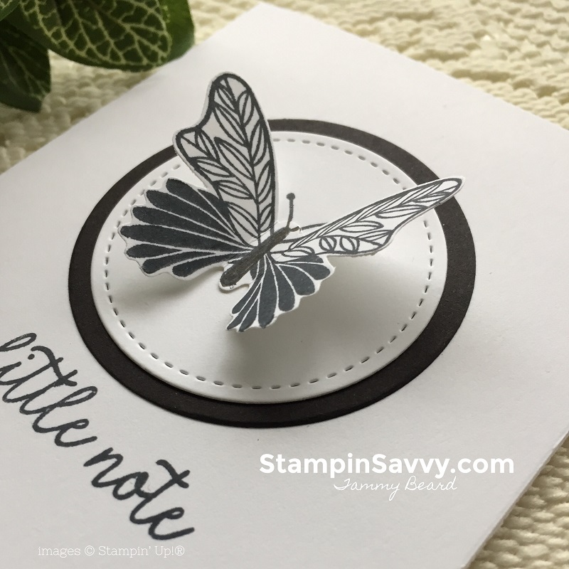 butterfly-gala-cards-stampin-savvy-stampin-up-stampinup-tammy-beard4