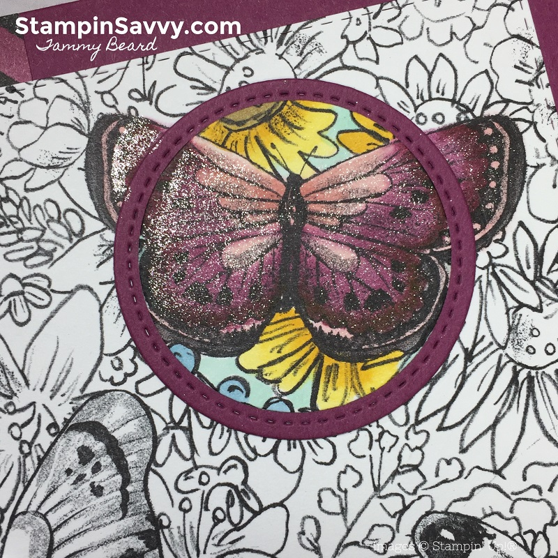 spotlight-technique-tutorial-botanical-butterfly-dsp-stampin-up-stampinup-stampin-savvy-tammy-beard1