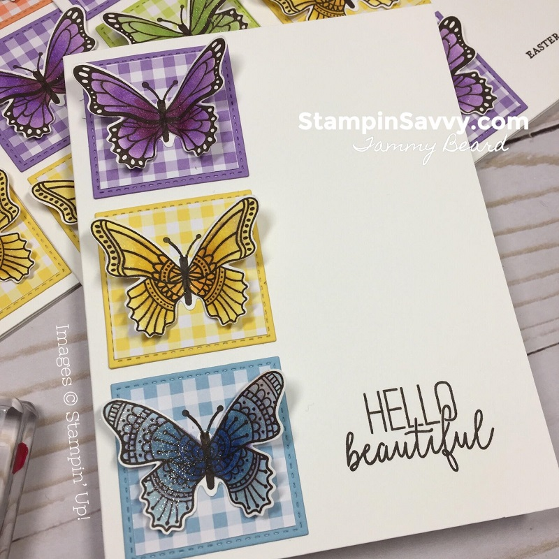 GINGHAM-GALA-BUTTERFLY-GALA-CARD-IDEAS-STAMPIN-SAVVY-STAMPIN-UP-TAMMY-BEARD2