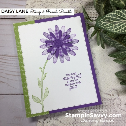 DAISY-LANE-BUNDLE-SIMPLE-CARD-IDEA-TAMMY-BEARD-STAMPIN-SAVVY-STAMPIN-UP-STAMPINUP3