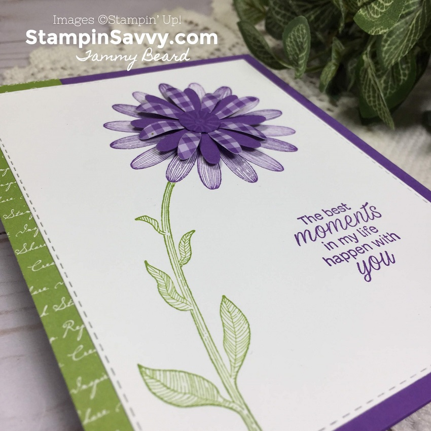 DAISY-LANE-BUNDLE-SIMPLE-CARD-IDEA-TAMMY-BEARD-STAMPIN-SAVVY-STAMPIN-UP-STAMPINUP4