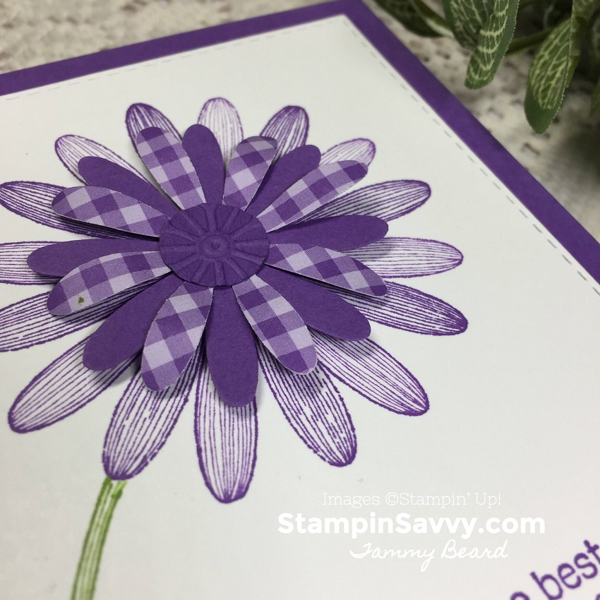DAISY-LANE-BUNDLE-SIMPLE-CARD-IDEA-TAMMY-BEARD-STAMPIN-SAVVY-STAMPIN-UP-STAMPINUP5