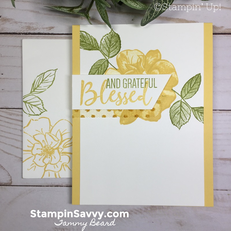 SIMPLE-STAMPING-TO-A-WILD-ROSE-CARD-IDEAS-STAMPIN-UP-TAMMY-BEARD-STAMPIN-SAVVY3