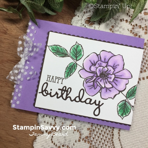 TO-A-WILD-ROSE-CARD-STAMPIN-BLENDS-STAMPIN-UP-STAMPIN-SAVVY-TAMMY-BEARD