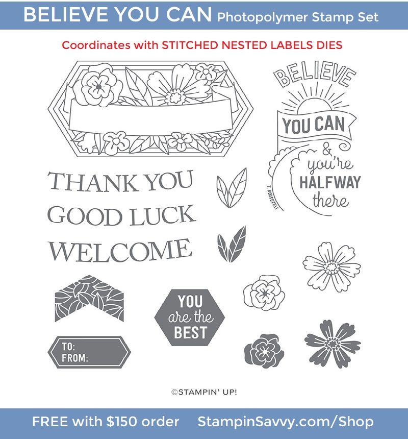 BELIEVE-YOU-CAN-149433-STAMPIN-UP-TAMMY-BEARD-STAMPIN-SAVVY