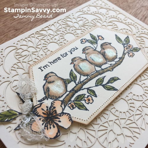 BIRD-BALLAD-LASER-CUT-CARDS-STAMPIN-SAVVY-TAMMY-BEARD-STAMPIN-UP5