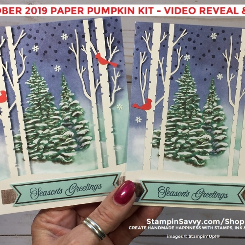 OCTOBER-2019-PAPER-PUMPKIN-CARDS-TAMMY-BEARD-STAMPIN-SAVVY-STAMPIN-UP