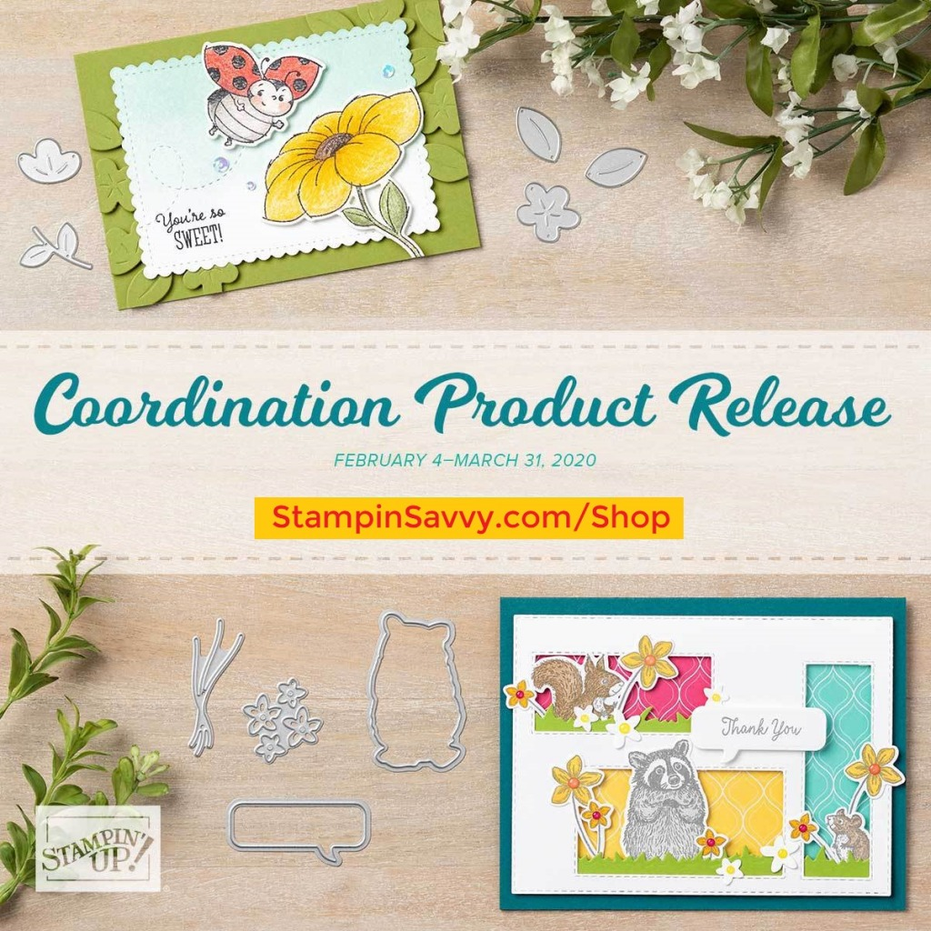 COORDINATION-PRODUCT-RELEASE-FEB-2020-STAMPIN-SAVVY-TAMMY-BEARD-STAMPIN-UP