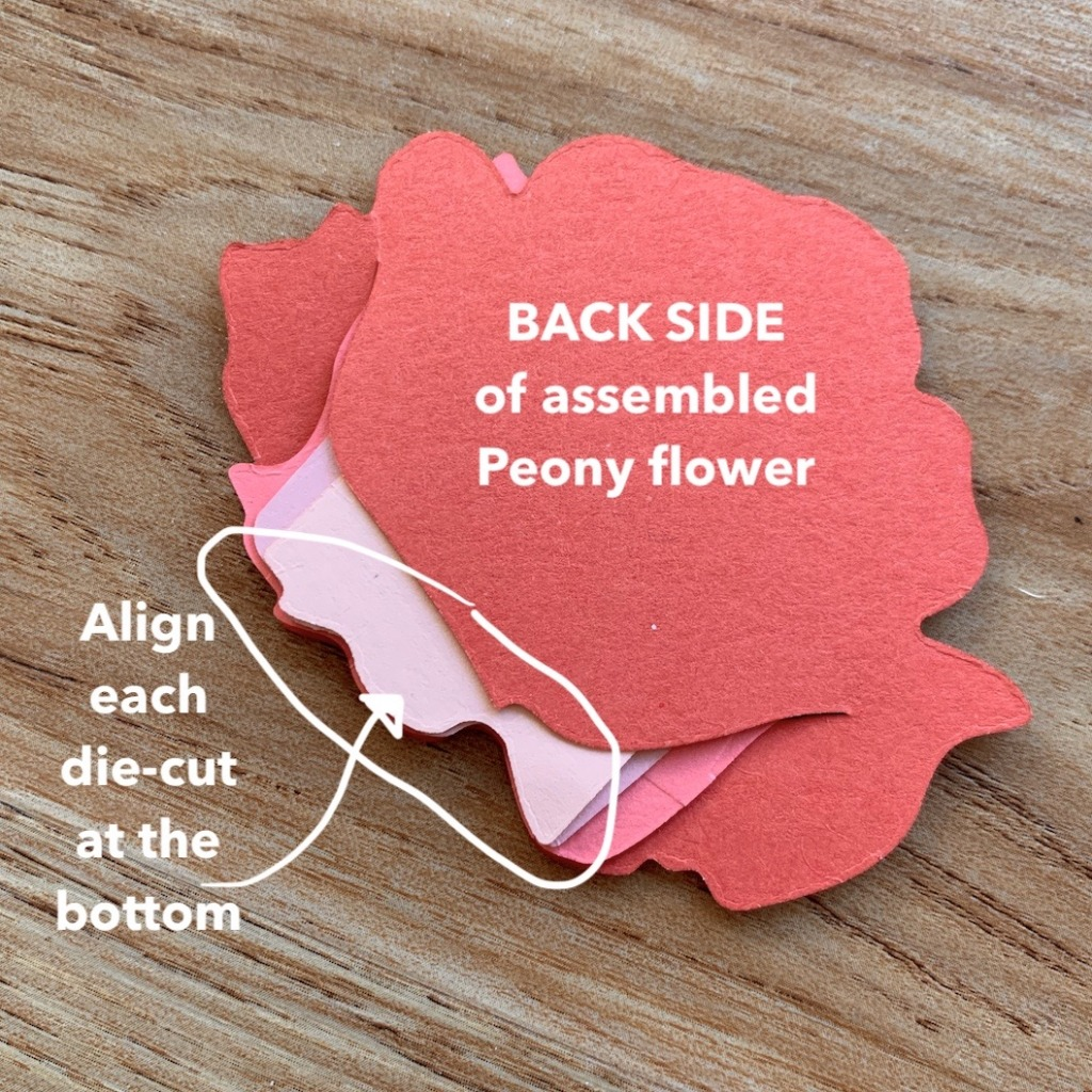 BACK SIDE OF ASSEMBLED PRIZED PEONY FLOWER